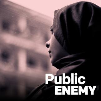 medium_rnz-public-enemy-icon